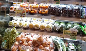 Investing in the Japanese Fruit and Vegetable Export Sales Business in Hong Kong-Supporting Market Growth for Japanese Agricultural Products through the Construction of an Export Expansion Platform-